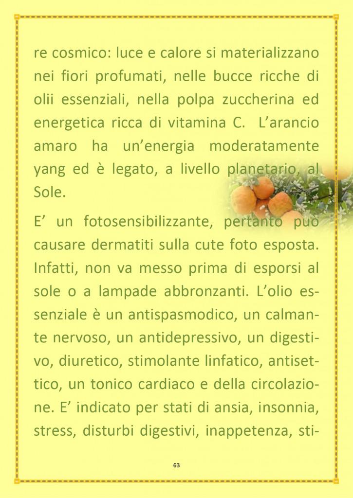INSERTO ESTIVO 2020_page-0018