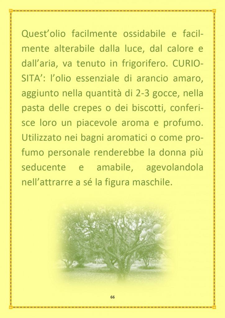 INSERTO ESTIVO 2020_page-0021